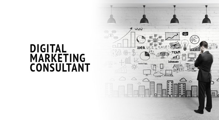 The Rise of Digital Marketing Consultant